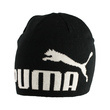 Fes copii Puma Ess Big Cat/N1 Logo Beanie Jr 02168404