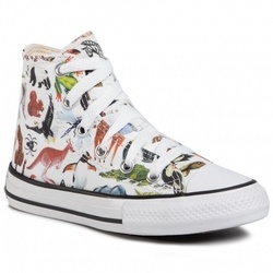 Tenisi copii Converse Chuck Taylor All Star Science Class Hi 668461C