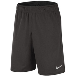 Pantaloni scurti barbati Nike Dri-Fit CJ2044-032